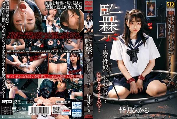 JAV Download Hikaru Minatsuki [DDHH 020] 監禁~男の性奴○になった私~ 皆月ひかる 2020 09 19