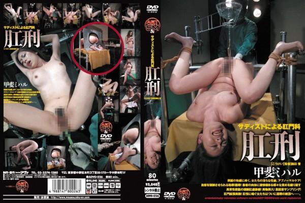 JAV Download Miharu Kai [ADVO 026] 肛刑 甲斐ミハル2012 07 13