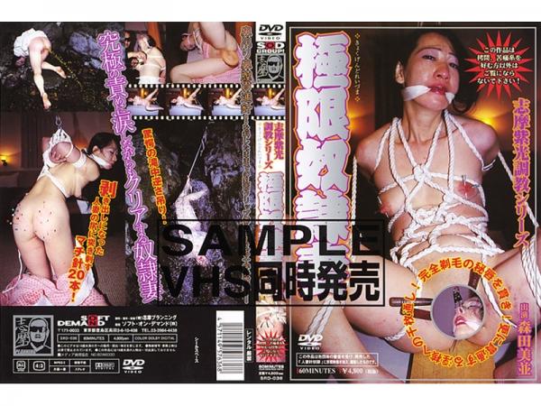 JAV Download Binami Morita [SRD 036] 志摩紫光調教シリーズ 極限奴隷妻 2004 05 20