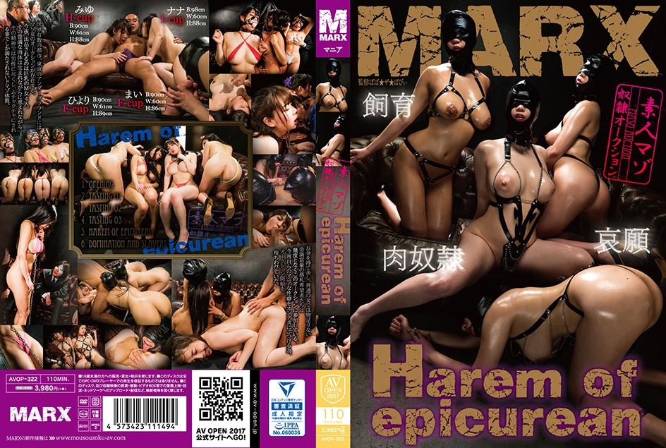 JAV Download [AVOP 322] Harem of epicurean ~素人マゾ奴隷オークション~ AV OPEN 2017マニア部門 凌辱 2017 09 01