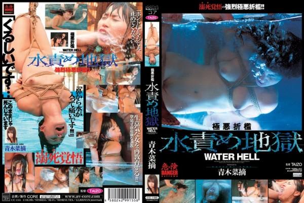 JAV Download Natsumi Aoki [CC 155] 極悪折檻水責め地獄 青木菜摘 Deep Throating 2008 10 01