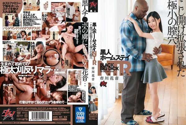 JAV Download Kanon Ichikawa [DASD 690] 黒人ホームステイNTR こじ開け拡張された極小の膣穴 ... 120分 2020 06 25