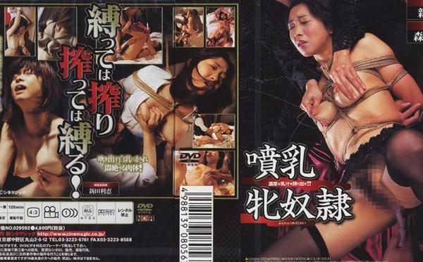 JAV Download [DD 056] 噴乳牝奴隷 おばさん Breast Milk 2003 03 28