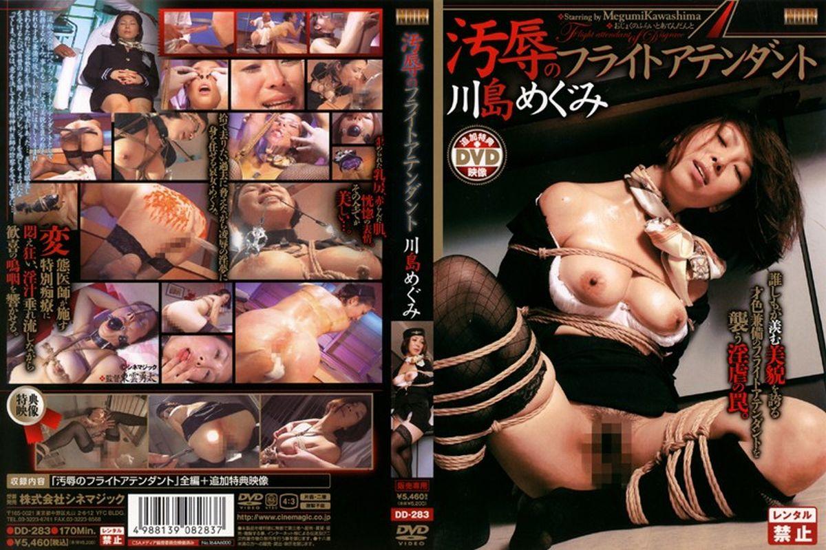 JAV Download Megumi Kawashima [DD 283] 汚辱のフライトアテンダント Pleasure Outlet プレジャーアウトレット 医療系 SM 170分 2007 12 01