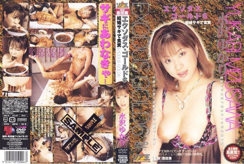 JAV Download Yukari Mizusawa [DWS 06] エクソダスゴールド6水沢ゆかり Scat モデル・お姉さん風 Amateur リア王 2002 05 17