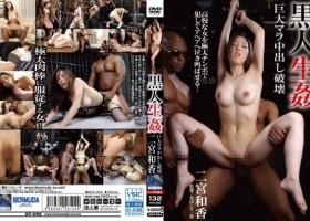 Waka Ninomiya [BDA-054] 黒人生姦 巨大マラ中出し破壊 二宮和香 調教 Fetish Planning Torture フェチ 2018-02-19